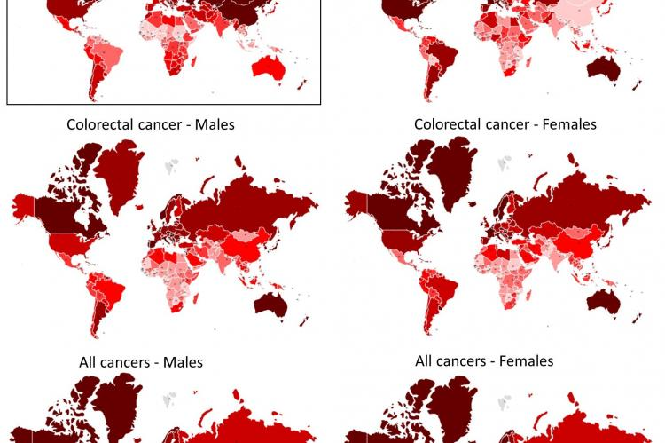 It is well known that cancer incidence is increasing worldwide, with pockets of human populations and geographical locations seemingly at higher risk than others, and that populations living in very low temperatures, like in Denmark and Norway, had among the highest incidences of cancer in the world. Researchers from Cyprus, led by Dr Konstantinos Voskarides of the Univesity of Cyrpus' Medical School, has advanced a new hypothesis: there is an evolutionary relationship that exists between adaptation at extr